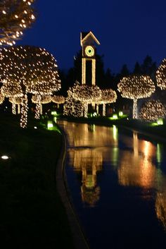 Coeur d'Alene during the holidays is absolutely stunning