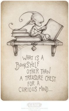 What is a bookshelf other than a treasure chest for a curious mind... visit us at: http://www.facebook.com/thepicsees