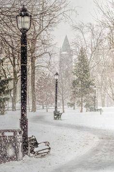Victoria Park in snow, Canada. I've only seen it in the summer but I bet the winter would be so pretty Winter Szenen, Winter Love, Winter Magic, Winter Christmas, Winter White, Snowy Christmas Scene, Christmas Time, Snow White, Merry Christmas