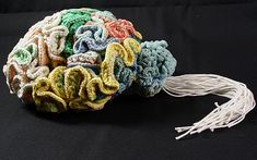 Psychiatrist Dr Karen Norberg, of National Bureau of Economic Research in   Cambridge, Massachusetts, spent a year knitting an anatomically correct   replica of the human brain.