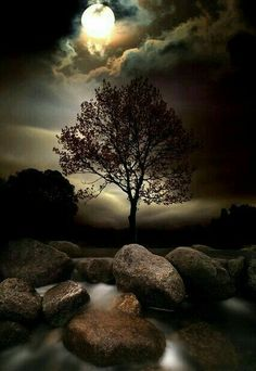 """""""Dreamworld by Ellis photography"""" - So mysteriously beautiful~ Moon light and magic stones. Beautiful Moon, Beautiful World, Beautiful Places, Moon Pictures, Pretty Pictures, Shoot The Moon, Lone Tree, Amazing Nature, Belle Photo"""
