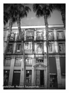 Málaga w Málaga, Andalucía