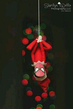 Spidey Elf. (-;