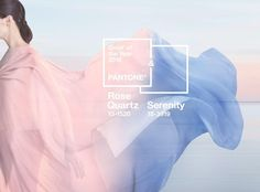 For the first time, Pantone is forecasting more than one shade as the defining Color of the Year. PANTONE Rose Quartz and PANTONE Serenity, a pale pink and baby blue, share the title of Color of the Year