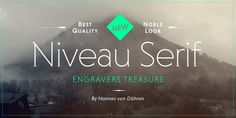 """Niveau Serif"" font by Hannes von Döhren from weandthecolor.com. I like the tracking and the slight difference of the ""e"" and ""a"" characters."