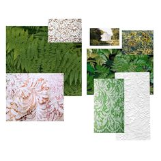 When stitching the designs of vegetation into lace, for centuries the philosophies of garden design and lace making have shared an inspirational link