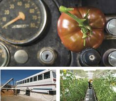 BussAqua - great way to reuse an old bus! Grow heirloom tomatoes inside it!