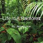 Rainforest habitat slide show - focusing on strata and rainforest products Rainforest Habitat, Real Teacher, Backyard Pool Designs, Teacher Hacks, Fresh Water, Habitats, Natural, Plant Leaves, Presentation