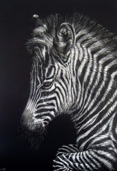 My little zebra that was featured in the Ampersand blog
