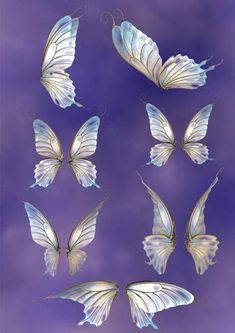 png overlays, 24 separate files in various colour Fairy Wings Drawing, Bottle Fairy Lights, Wings Wallpaper, Wings Design, Vintage Paper Dolls, Fantasy Weapons, Butterfly Wings, Nature Pictures, Art Inspo