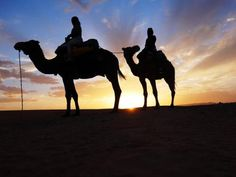 2013年秋、異国情緒あふれるエキゾチックな国モロッコへ。<br />★7日目:サハラ砂漠キャンプ(1/2)編★<br /><br />砂漠キャンプ、前編です。<br />------------------<br />◇日程◇<br />1~2日目:成田出発→ドバイ経由カサブランカ着→メクネス<br />3日目:ヴォルビリス遺跡→シャウエン<br />4日目:シャウエン→フェズ<br />5~6日目:フェズ<br />7日目:メルズーガ(砂漠キャンプ)<br />8日目:トドラ渓谷→ダデス渓谷<br />9日目:アイト・ベン・ハッドゥ→マラケシュ<br />10~11日目:マラケシュ<br />12~13日目:帰国<br /><br />航空券・フェズ/マラケシュ泊リヤドは個別手配。<br />英語ドライバー・その他宿泊はオーダーメイドツアー利用。<br />各都市での観光はフリーです。<br />------------------