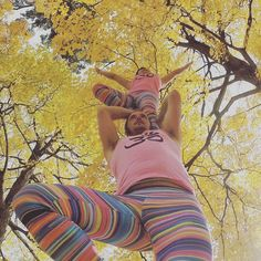 Double tree amongst trees!  We love the fall colours around us; Ottawa is such a beautiful place to play.  #Ottawa #Tree #PartnerYoga #Yoga #Instayoga #Ottawa #OttawaYoga #Colour #LiveInColor #LoveMyDharmaBums #SmileyOm #Balance #Leggings #Meggings #Maple #Autumn #AcroRevolution #Acroyoga #Acrobatics #Love #Fun #Perspective #Nature #Beauty