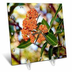 Buy Desk, Desk Clock, Flowering Trees, Amazon, Flowers, Plants, Beautiful, Clock Table, Riding Habit