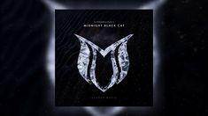HyperPhysics - Midnight Black Cat Cats, Music, Black, Musica, Gatos, Musik, Black People, Muziek, Cat