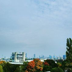 View for a week the skyline of Frankfurt am Main. by luciusmaximus