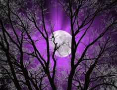 Abstract  Purple Sky Moon Tree Wall Art  Home by LittlePiePhotoArt,
