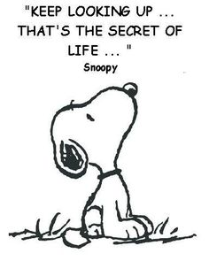 Keep looking up... That's the secret to life ... Snoopy ♥