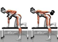 ROBOLIKES — fitnessforevertips: Work your muscles to look...