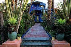 Madison Cox Sidewalk, Gardens, Plants, Side Walkway, Outdoor Gardens, Walkway, Plant, Walkways, Garden