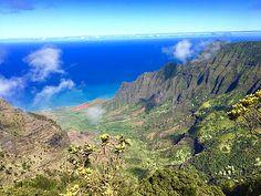 Welcome to the Aloha State! Benefits Of Coconut Oil, Bali, Skincare, Australia, Organic, Island, Vegan, Mountains, Healthy