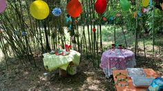 Pic-nic party