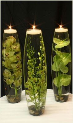 10 Satisfied Tricks: Natural Home Decor Diy Front Doors natural home decor inspiration bedrooms.Natural Home Decor Living Room Couch natural home decor feng shui house plants.Natural Home Decor Ideas Art Studios. Natural Home Decor, Unique Home Decor, Men Home Decor, Natural Bedroom, Deco Floral, Floating Candles, Hanging Candles, Hanging Plants, Deco Table