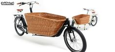 Cargo Bike mit Hundekorb