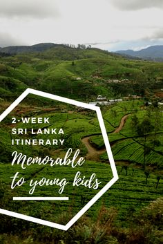 2-Week Sri Lanka Itinerary Memorable To Young Kids