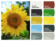 Paint colors from Chip It! by Sherwin-Williams  i love the grass-green and bright yellow :)