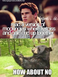 I aboalutely love Gale like he's one of my favorite characters, but him an Katniss were never right for each other.