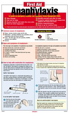 Anaphylaxis Posters to Download | Anaphylaxis Poster - First Aid