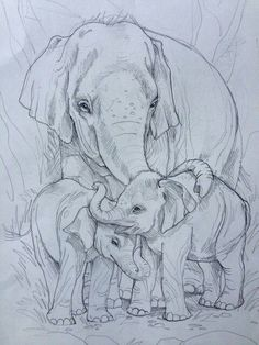 Music drawings doodles sketches Ideas for 2019 Baby Elephant Drawing, Elephant Sketch, Baby Drawing, Painting & Drawing, Elephant Drawings, Photo Elephant, Elephant Art, African Elephant, Elephant Tattoo Design