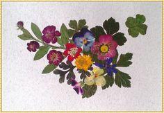 Bilder, welche die Glück bringen Ich Verkaufe die Bilder, welche die Glück bringen. Sie ist von getrockneten des mediterranen Kräutern und Blumen, einschließlich der vierblättrige Klee und andere Flowers, Crafting