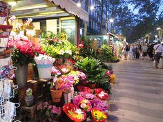 florería en La Rambla. Barcelona