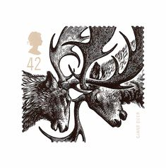 Giant Deer wood engraving for Royal Mail postage stamp - Andrew Davidson Royal Mail Postage, Art Postal, Woodcut Art, Comic Manga, Postage Stamp Art, Love Illustration, Wood Engraving, Wildlife Art, Illustrations