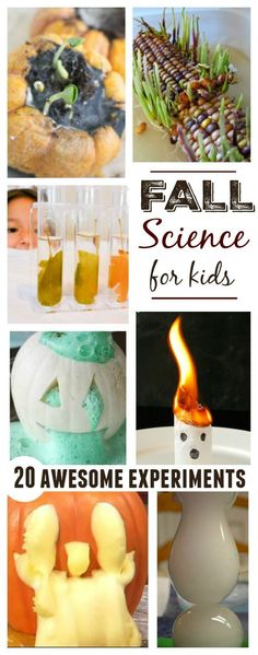20 awesome fall science experiments for kids- ghostly and pumpkins, corn and seed science as well! Great activities for preschool and kindergarten!