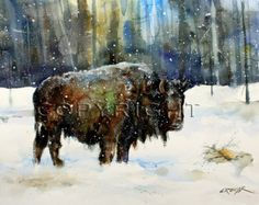 BUFFALO Watercolor Nature Art Print by Dean by DeanCrouserArt
