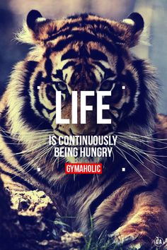 For me life is continuously being HUNGRY.