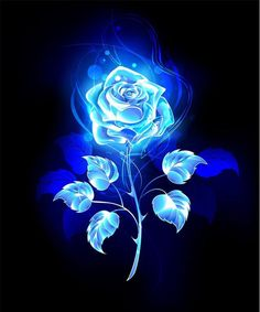 Burning blue rose Royalty Free Vector Image – VectorStock – Famous Last Words Blue Roses Wallpaper, Black And Blue Wallpaper, Wolf Wallpaper, Flower Phone Wallpaper, Neon Wallpaper, Butterfly Wallpaper, Cute Wallpaper Backgrounds, Blue Wallpapers, Pretty Wallpapers