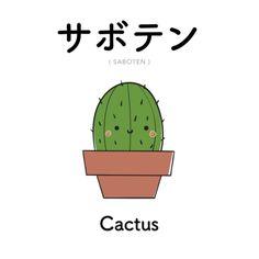 [369] サボテン | saboten | cactus