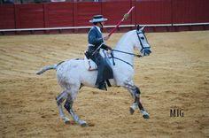 caballos de rejoneo