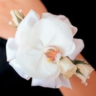 White Spray Rose, 1 bloom of Phalaenopsis Orchid, a decorative Ribbon; $23.99