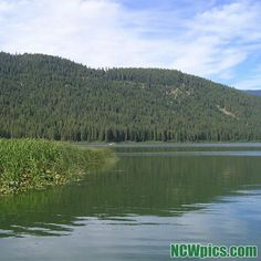 #FishLake near #LakeWenatchee in the #CascadeMountains. #TheCove #lakes #instagram #fishing #ncwpics