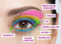 Het myterie eens en voor altijd opgelost! Zo verwarrend allemaal, die verschillende kleurtjes op een oogschaduw-pallet. Dankzij deze eenvoudige gids ...
