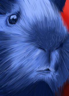 Portriat of my guinea pig c: