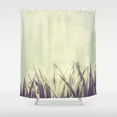 https://society6.com/product/dragon-tree-9du_shower-curtain#35=287