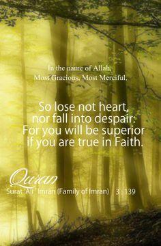 Quran Sayings, Quran Verses, Quran Quotes, Hindi Quotes, Islamic Quotes, Best Quotes, Way Of Life, Real Life, Dont Lose Hope