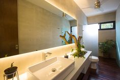 In this modern bathroom, there's a backlit mirror above a vanity has a spot specifically designed to house plants. Wood flooring also carries through into the shower.