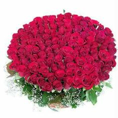 Valentine Day Gifts Valentines Flowers 100 Red Roses Yellow Online Flower