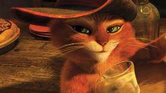 40+ bästa bilderna på Mästerkatten | katt, film, disney